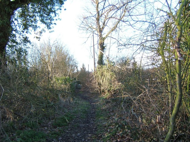 Footpath to Hockley Wood