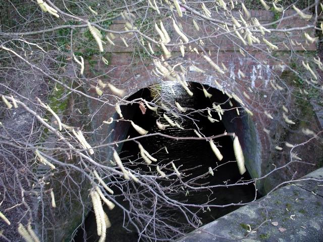 River Itchen in a conduit