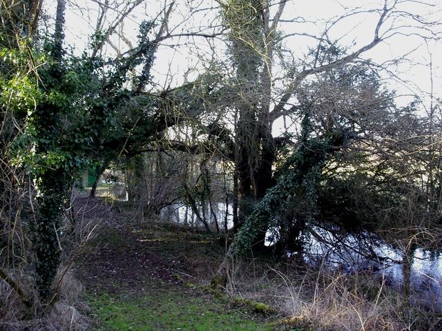 River Itchen north of Alresford Road
