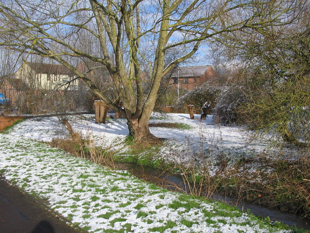 Bitham Brook