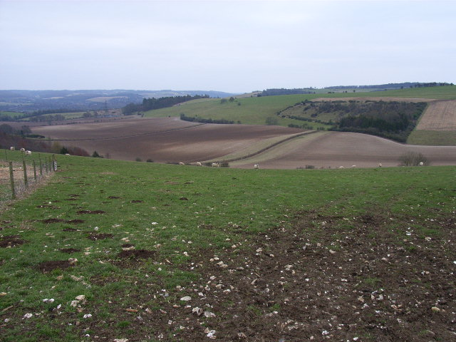 Valley in the Moulsford Downs