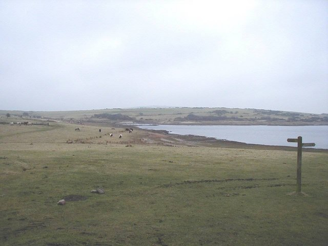 Colliford Lake NW end on Bodmin Moor