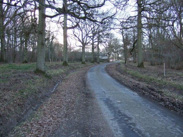 Lane to Garston's Farm
