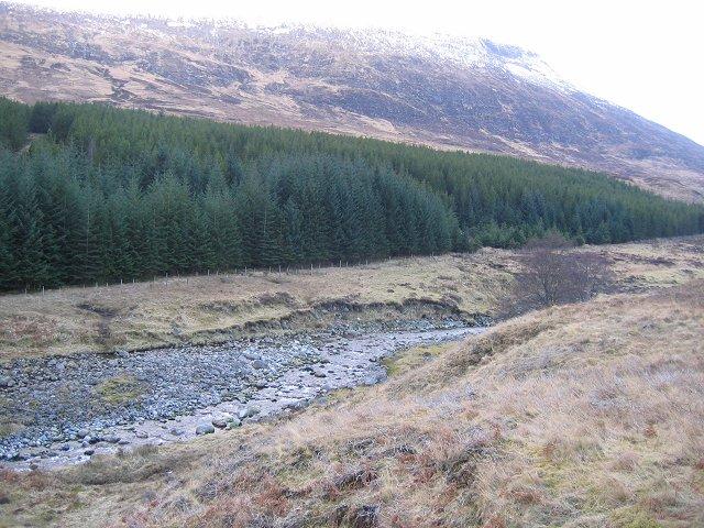 Forestry, Glen Markie
