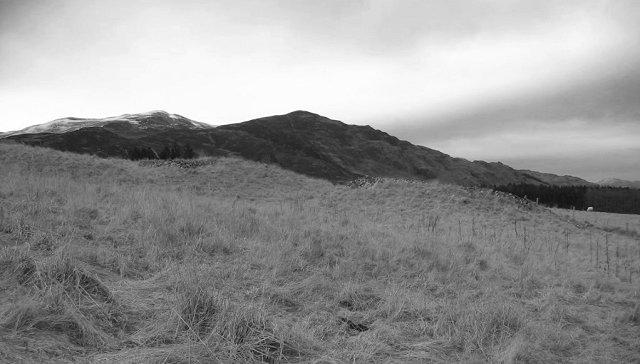Crathie farmland