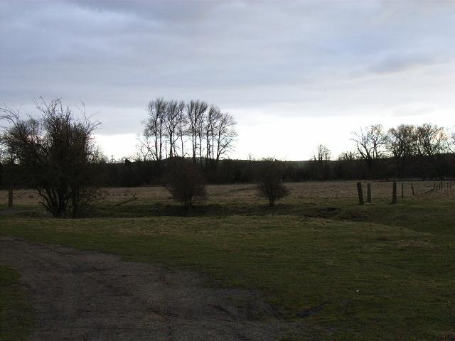 West Hagbourne Moor