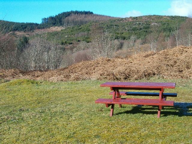 Picnic place near Torinturk