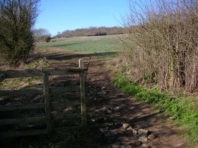 Bridleway below Woodford Shrubbery