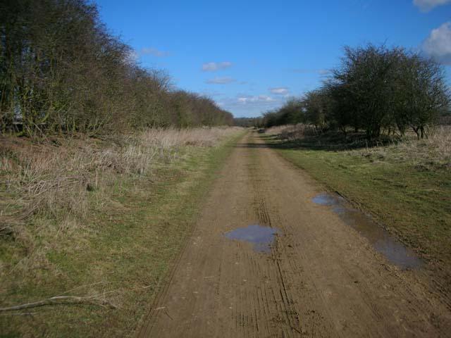 Bridleway along a dismantled railway