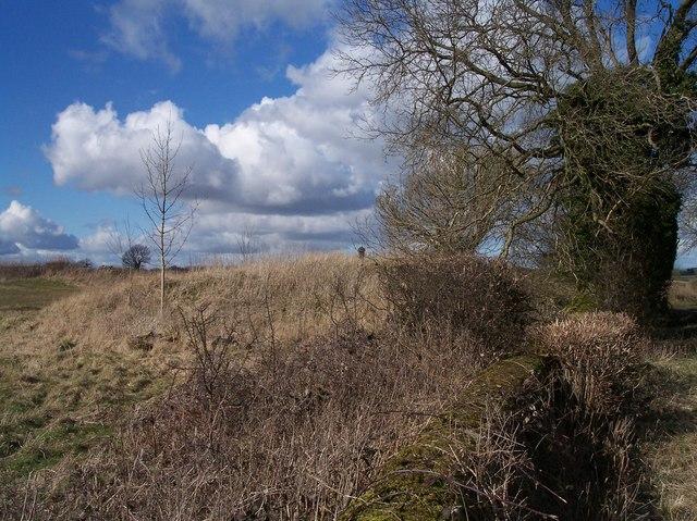 Reservoir, near Moor House