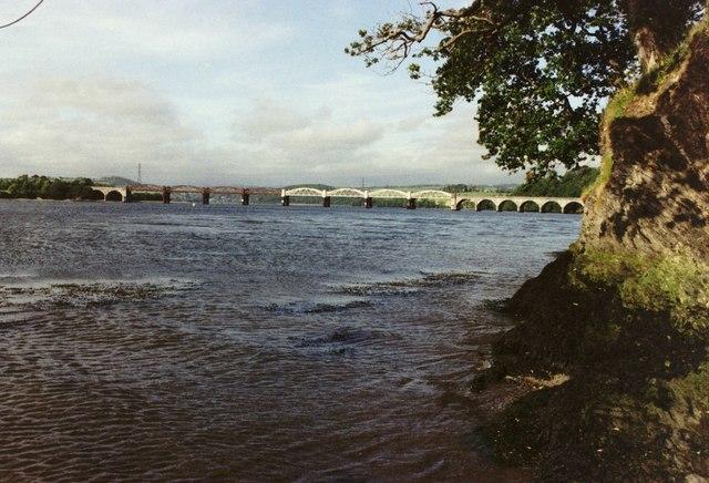 Tavy Bridge from Warleigh Point