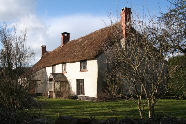 Uffculme: cottage at Ashill