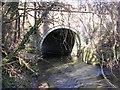 SJ8583 : River Dean at Handforth Bridge by Keith Williamson