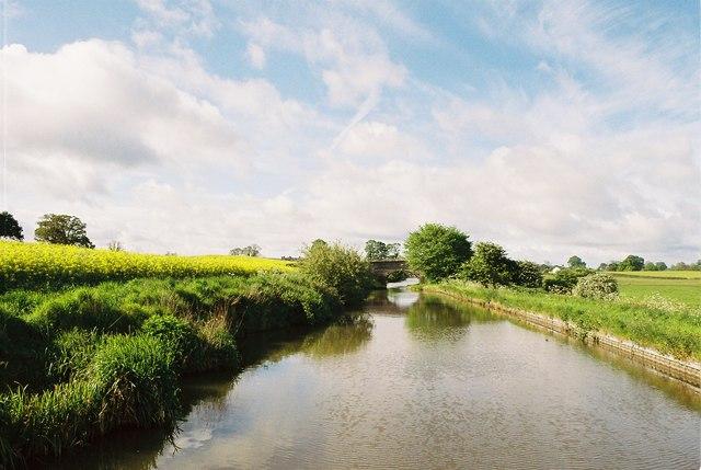 Llangollen Canal - White Mill Bridge
