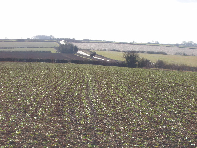 Burford to Stow road, view over crops
