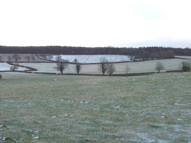 Fields in light snow, Idbury