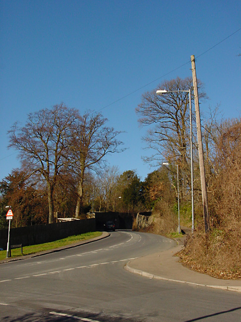 Looking up Kings Weston Lane