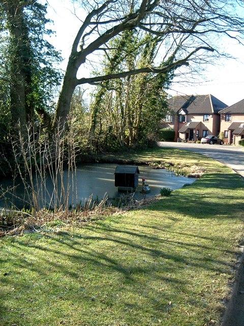 Duck Pond, Whelpley Hill
