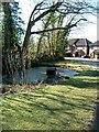SP9904 : Duck Pond, Whelpley Hill by Rob Farrow