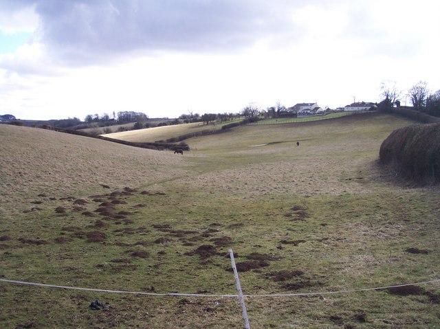 Horses Grazing, Sidelands