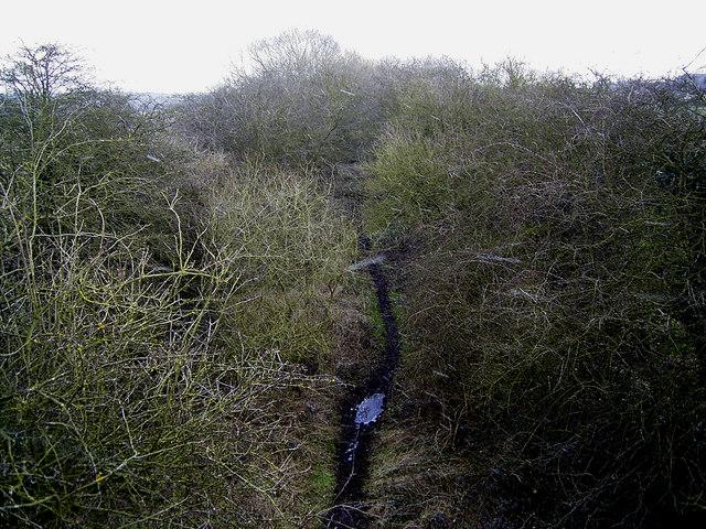 Trackbed of former railway near Odstone, Leics