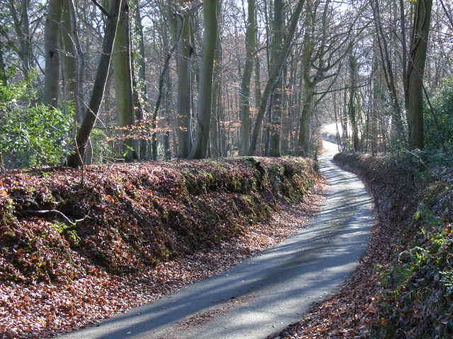 Holloway Lane