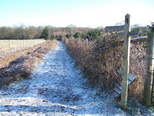 Footpath to Hook Wood