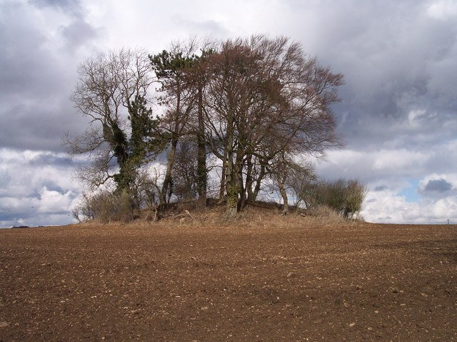 Tumulus near Hailer's Wood