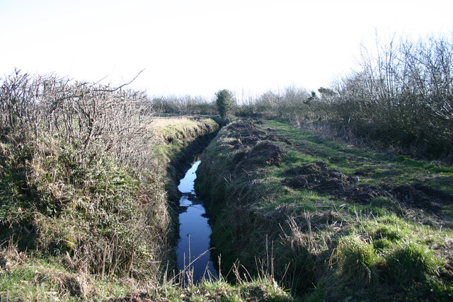 Ditch and Track to Sludge Beds