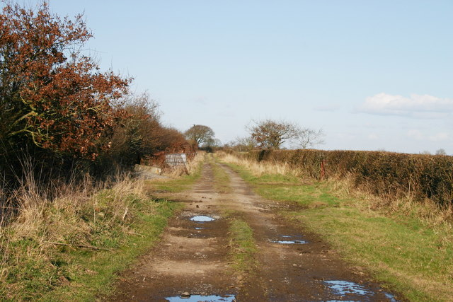 Track at Wampool Grange