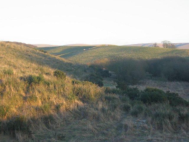 Cauldhall Moor.