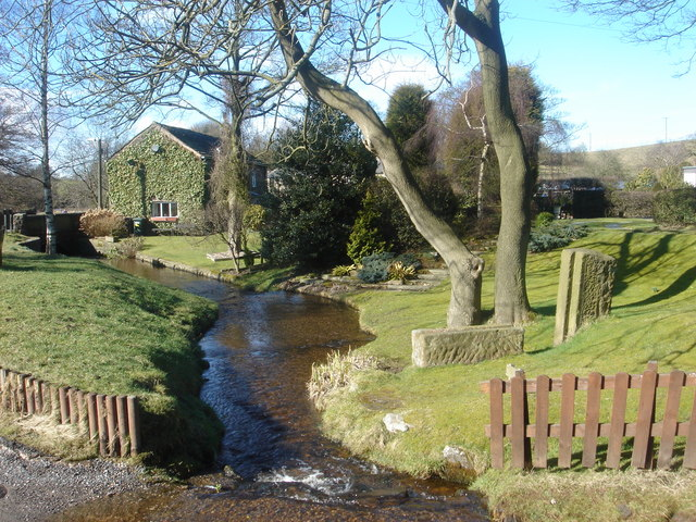 Brook at White Coppice