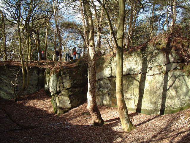 Disused Sandstone Quarry in Ruff Wood