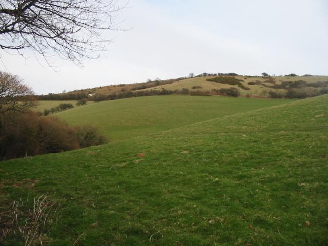 Farmland and Eype Down