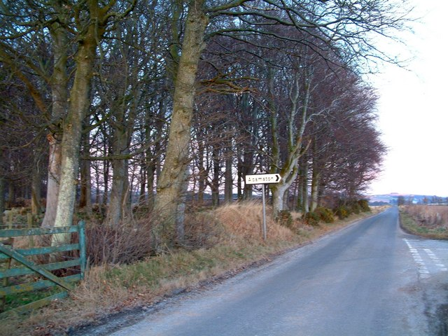 Copse by Adamston junction