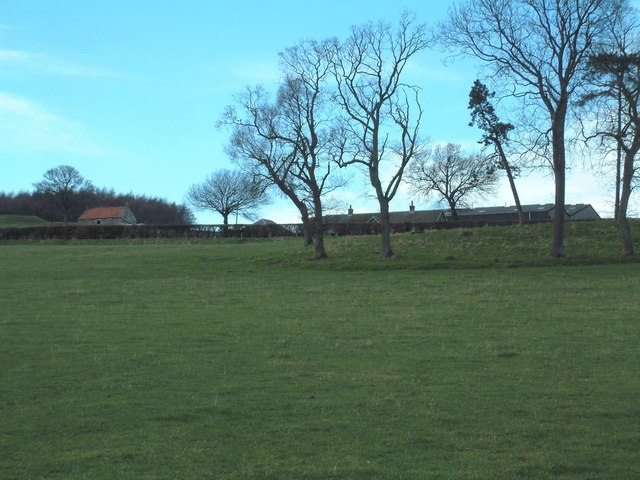 Scotscraig Mains Farm