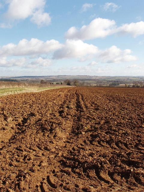 Ploughed field near Fifield