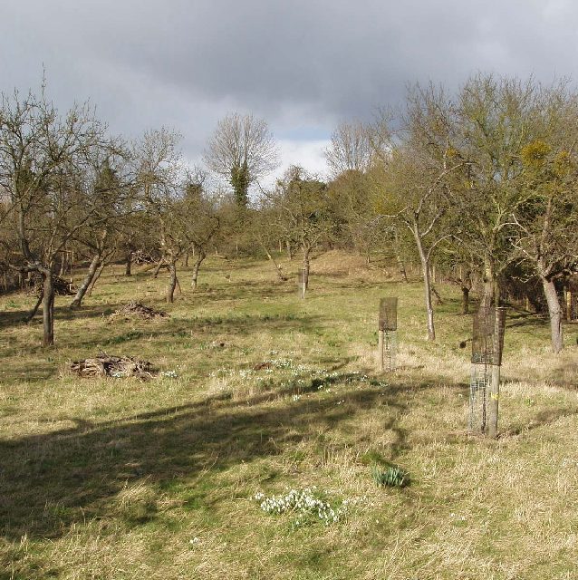 Daffurn's Orchard, Kemerton