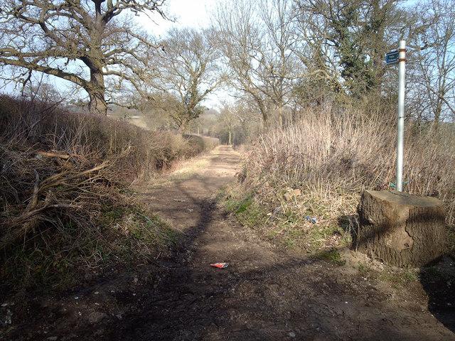 Packhorse Lane