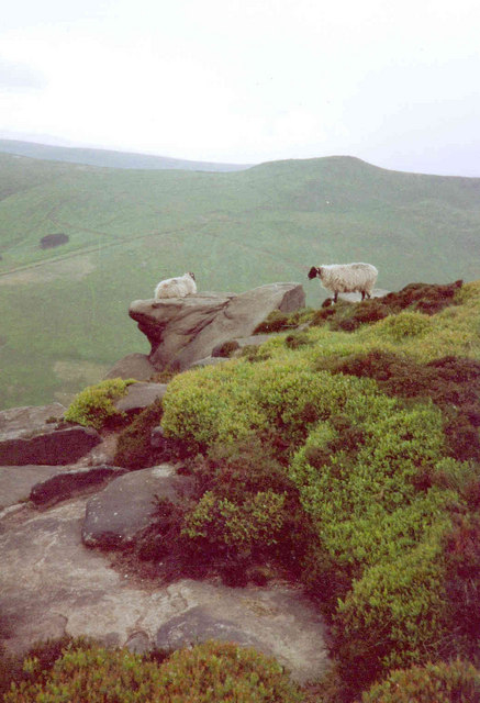 Rock outcrop by the path above Edale youth hostel