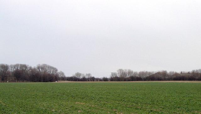Holderness Farmland