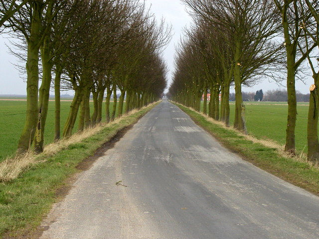 Road to Ottringham