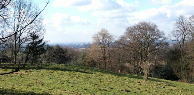 No Longer an Exclusive View, Warley Place