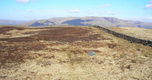 Longbank Peat Moss