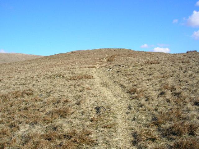 Thorn Moor