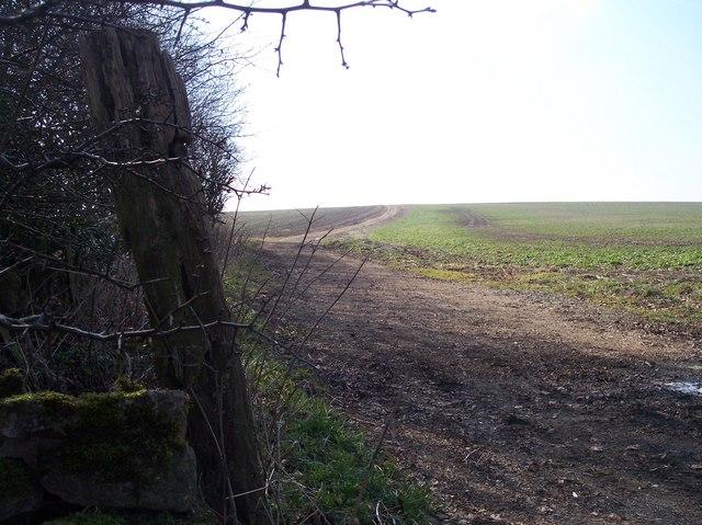 Bridleway to Elkstone