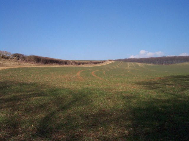 Track to Chescombe Bottom