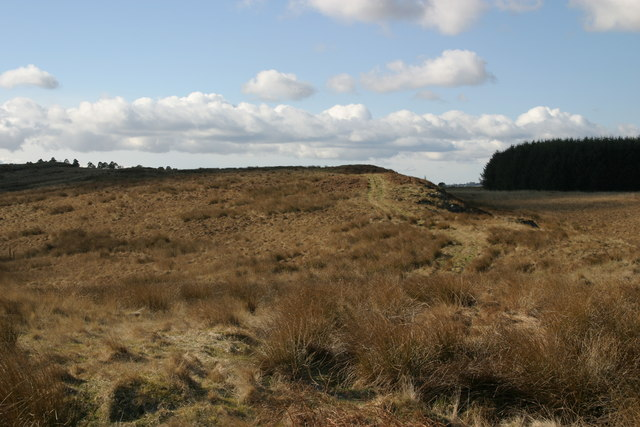 Eastern end of Lunga Crag