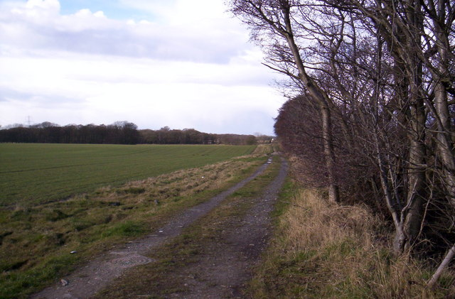 Farmland near Eccleston