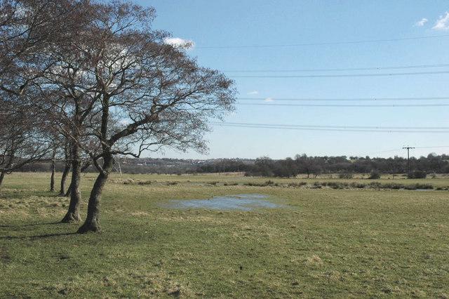 Pasture land north of Gawber